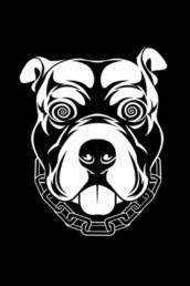 Logo-Iron Streetwear Zfanz Riccardo Fantechi